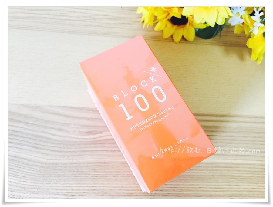 ブロック100の届いた状態の写真